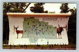 Ontario- Canada, General Greeting, Algonquin Provincial Park, Chrome Postcard