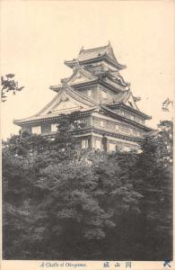 Okayama Japan Castle Scenic View Antique Postcard JD228045