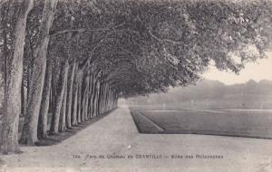 CHANTILLY, Oise, France, 1900-1910´s; Parc Du Chateau De Chantilly, Allee De...