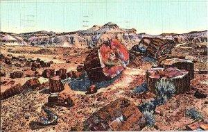 Petrified Forest Arizona Vintage Postcard Standard View Card