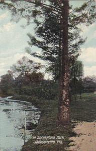 In Springfield Park , JACKSONVILLE , Florida , PU-1910