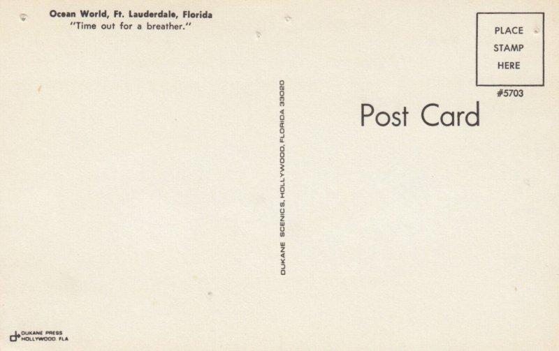 Dolphin , Ocean World , FORT LAUDERDALE , Florida , 1950-60s