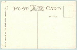 Western North Carolina~Land of the Sky~Railroad @ 17 Points~Birdseye View~1920s