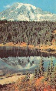 MOUNT RAINIER Reflection Lake, WA c1950s Chrome Vintage Postcard