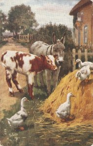 Sydney Hayes. Making Friends Tuck Oilette Our Farm Ser.PC # 9360
