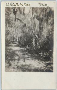 1910s Orlando, Florida RPPC Real Photo Postcard Road Trail Scene Spanish Moss
