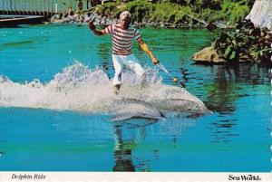 Florida Orlando Sea World Dolphin Ride Show