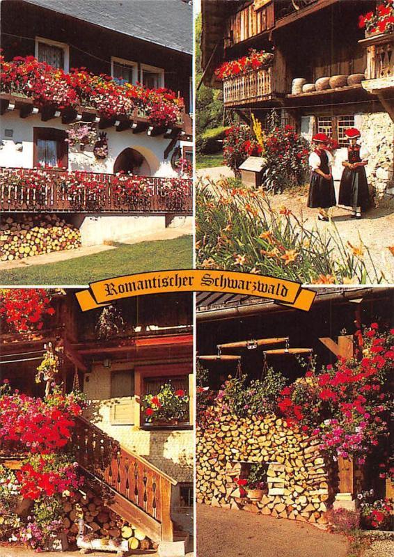 Romantischer Schwarzwald Haus House Flowers Traditional Costumes Blumen