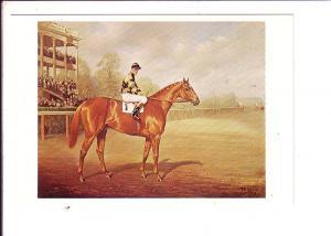 Franklin Voss, Man O'War, Race Horse