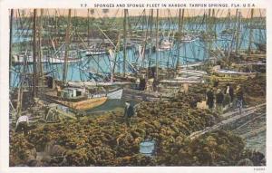 Florida Tarpon Springs Sponges And Sponge Fleet In Harbor 1928
