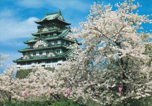 Japan Osaka's Castle Surrounded By Cherry Trees In Full Bloom