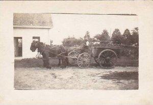 Horse Drawn Wagon Real Photo