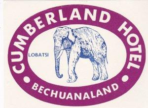 Bechuanaland Lobatsi Cumberland Hotel Purple Elephant Luggage Label lbl0458