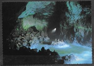 Oregon Coast, Sea Lion Caves, unused