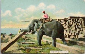 Elephant Piling Teak Wood Working Rangoon #112 D.A. Ahuja Unused Postcard G47