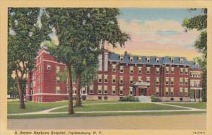 New York Ogdensburg A Barton Hepburn Hospital Curteich