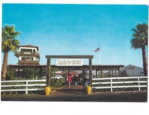 Catalina Island California Airport in the Sky Avalon Continental card 4 by 6