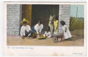 Mexican Family Los Consentidos de la Casa Mexico 1905c postcard