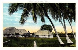 13781  Cuba  Havana    Native Huts