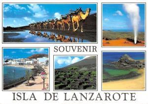 Spain Souvenir Isla de Lanzarote (Islas Canarias)