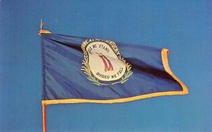 KENTUCKY STATE FLAG Bluegrass State c1960s Chrome Vintage Postcard