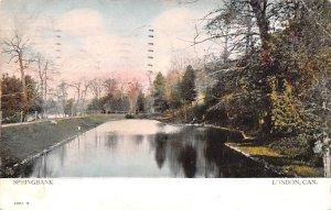 Springbank Park London 1907