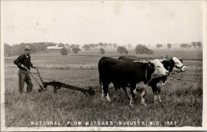 Augusta Wisconsin~National Plow Matches~Farmer Hand Plows~Pair Oxen~1953 RPPC