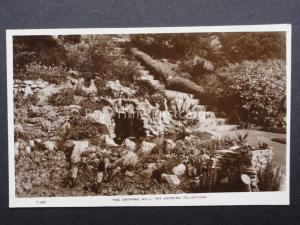 Suffolk: Felixstowe, The Dripping Well Spa Gardens - Old RP Postcard by E.T.W.D.