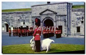 Postcard Modern Quebec Canada Chevre Bouc