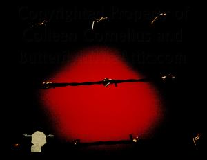 Set of 6, Pop Art Black Barbed Wire Over Black And Blood Red Eerie Imprisonment