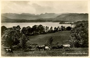 UK - England,  Windermere. View from Low Woods *RPPC