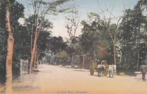 Orchard Road Singapore 1910 View Postcard