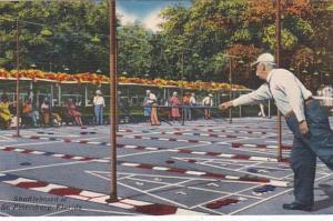 Florida St Petersburg Shuffleboard Court