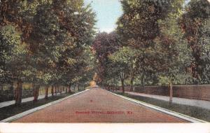 Danville Kentucky~Second Street~Fence Lined Sidewalk~Residential~1908 Postcard