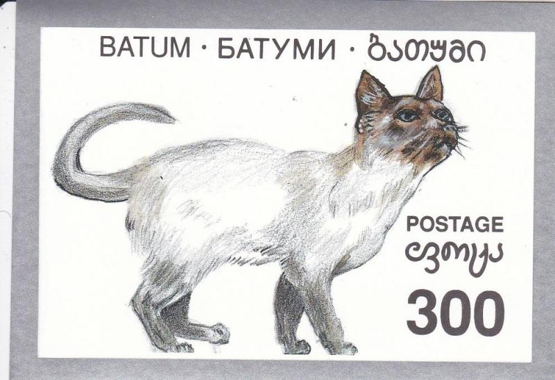 Batum -Cat, Souvenir Sheet, NH