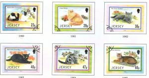 Jersey  Sc 1049-54 2002 Cats stamp set used