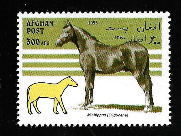 Afghanistan 1996 - MNH - Unlisted - Pic 2 *