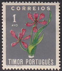 Timor 260 Blackberry Lily 1950