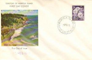 Norfolk Islands Scott 38 Unaddressed.