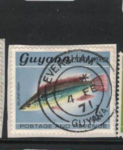 Guyana Fish Eversham Town Cancel VFU (6dua)