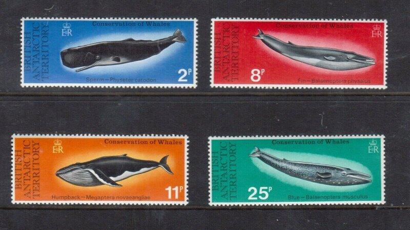 British Antarctic Territory #64 #65 #66 #67 Very Fine Never Hinged Set