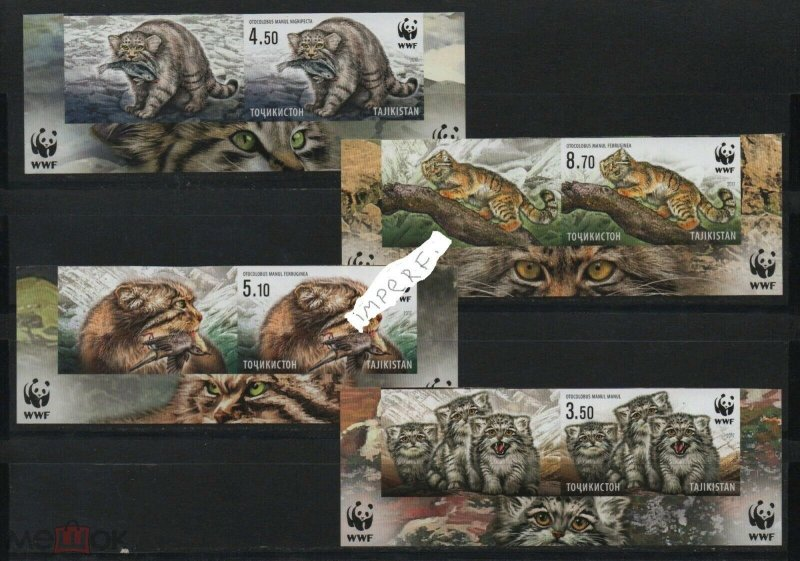 Tajikistan 2017 wild cats animals manul wwf 4v+coupones MNH imperforated !