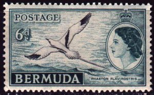 Bermuda. 1953. 138 from the series. White-tailed phaeton, birds, fauna. MNH.