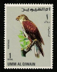 Birds - Falcons 1 Riyal 1968 (T-5185)