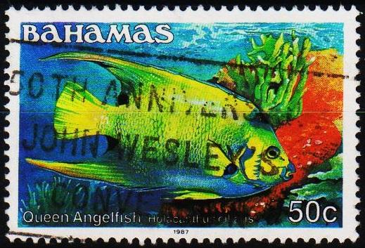 Bahamas. 1986 50c S.G.767A Fine Used