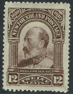 NEWFOUNDLAND 1911 KEVII 12C PERF 14