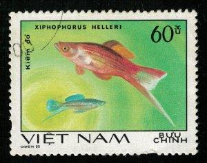 Fish 60Xu (TS-237)
