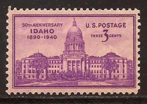 U. S.  #  896  Mint  N H .