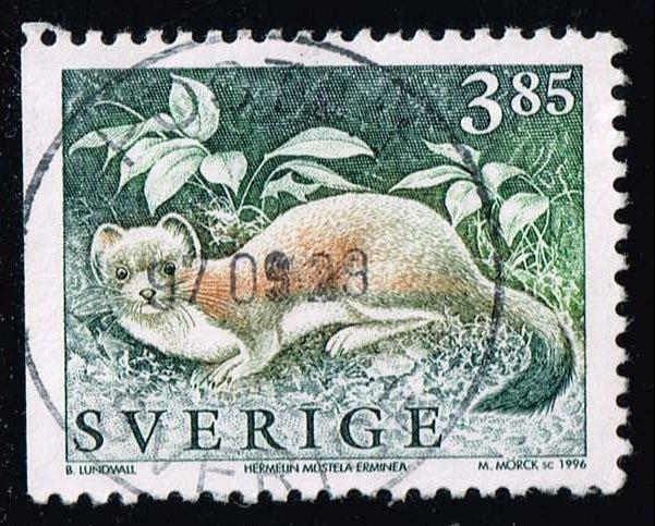 Sweden #1924 Stoat Weasel; Used (0.25)