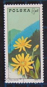 Flowers, (2515-T)